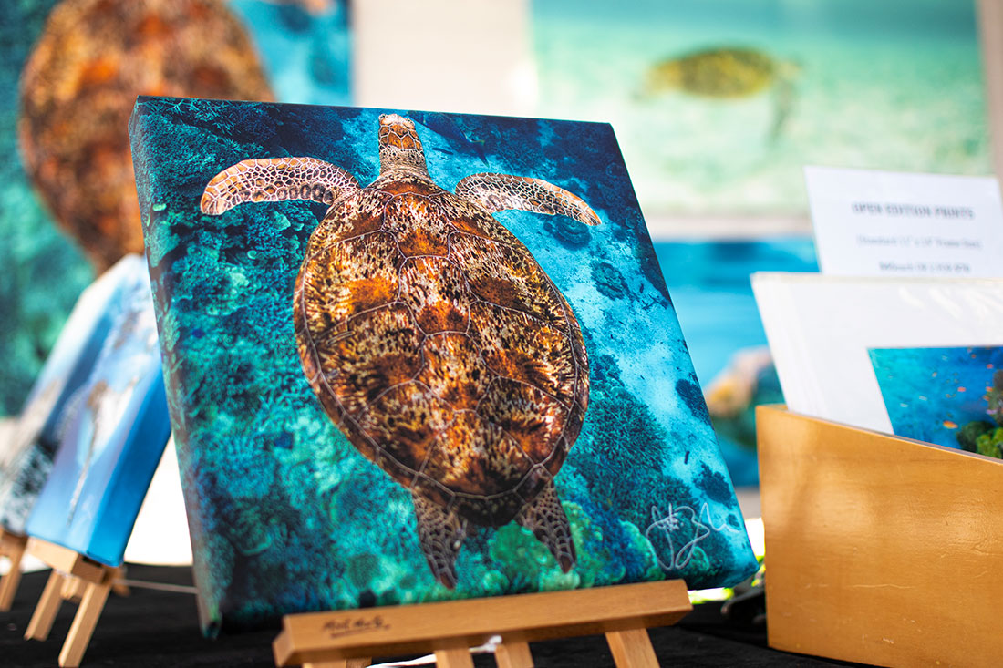Pure Underwater Imaging